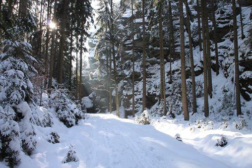 Sächsische Schweiz - Kohlgrund