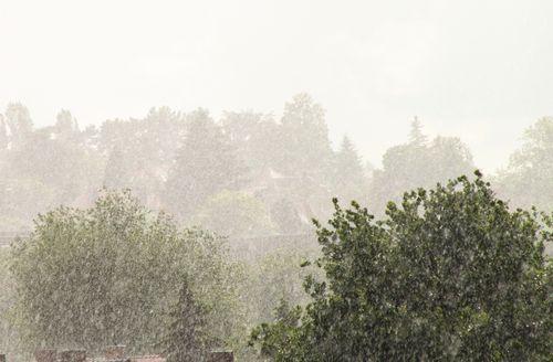 Ein Regentag im Mai - Im Juni kommt die Sonne!