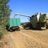 2012/08 - Getreideernte