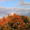 2012/10 - Herbstzeit