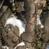 2013/01 – Der Winter ist mit Schnee, Eis und Kälte wieder zurück.