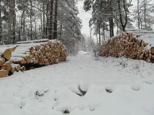 2013/03 – Winterlandschaft mit Erwartung auf den Frühling.