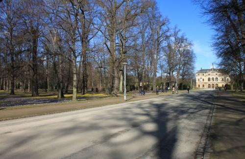 """2014/02 - Krokusse und Winterlinge am Palais des """"Großen Garten"""" von Dresden."""