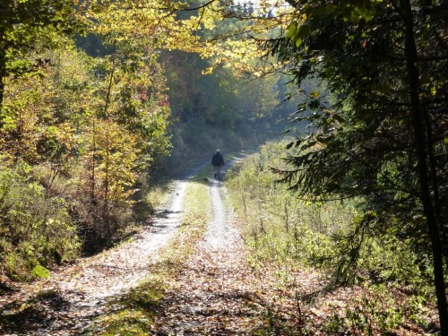 2015/10 – Auf dem Weg durch den goldenen Oktober.