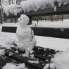 2016/01 – Nun ist der Schneemann in Dresden.