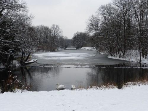 """2016/01 – Schnee im """"Großen Garten"""" in Dresden."""
