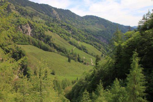 2016/06 - Wandern in der tiroler Landschaft.
