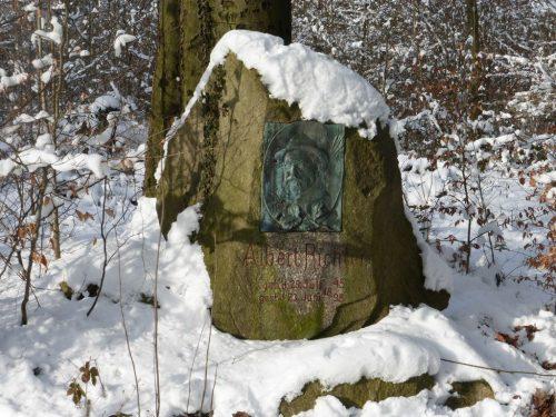 2017/01 - Winterwanderung in der Dresdner Heide.