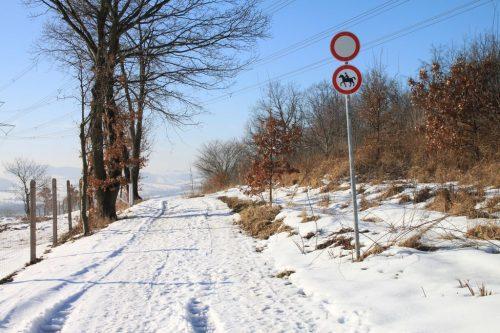 2017/02 - Eine Winterlandschaft zu Fuß erkunden.