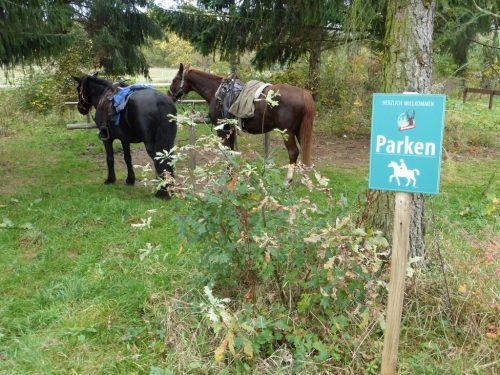 2017/10 - Ein Parkplatz auch für Pferde.