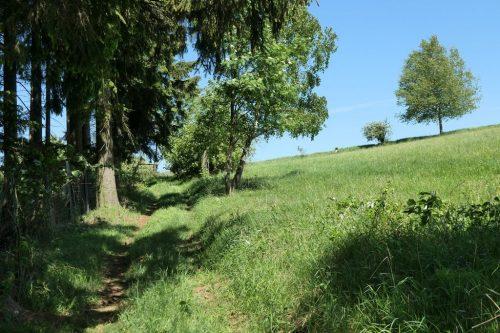 2018/05 – Wandern im Erzgebirge. (Crottendorf 6)