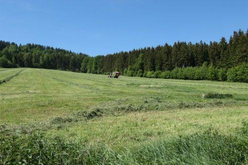 2018/05 – Wandern im Erzgebirge. (Crottendorf 3)