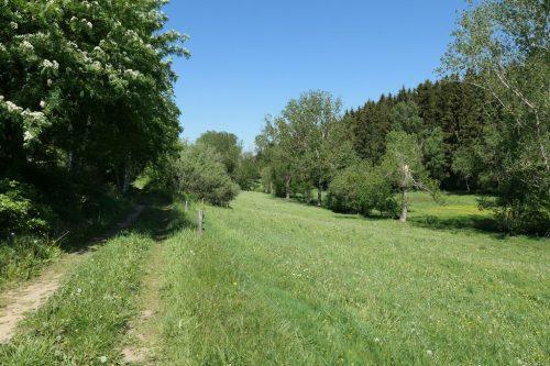 2018/05 – Wandern im Erzgebirge. (Crottendorf 2)