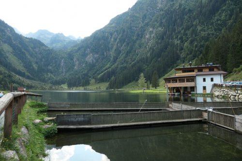 2018/08 - Steirischer Bodensee in 1157 m Höhe.