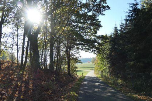 2018/10 - Kleine Herbstwanderung [5]