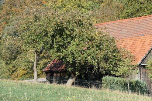 2018/10 - Kleine Herbstwanderung [2]