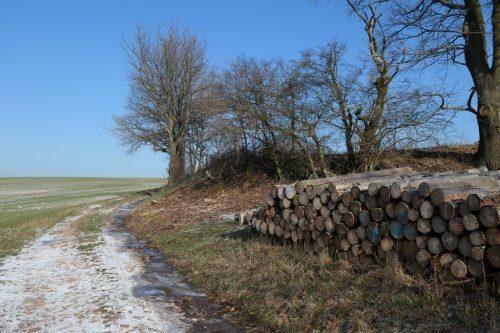 2019/01 - Winterlandschaft unweit von Dresden.