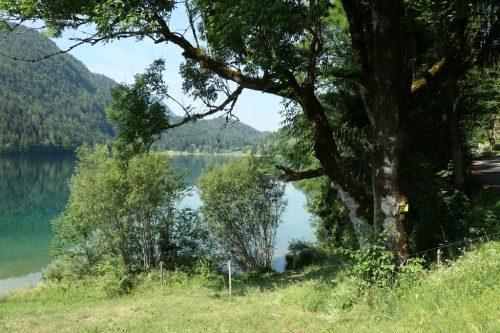 2019/07 - Blick über den Hintersteiner See.