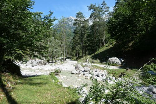2019/07 - Wanderung um den Unterberg. [3]