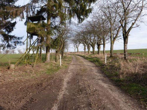 2020/02 - Wanderung unweit von Hohenstein-Ernstthal. 02
