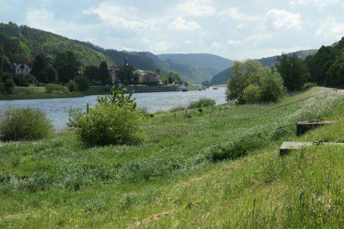 2020/05 - Bad Schandau - Königstein [1]