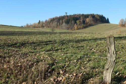 2020/11 - Blick von Hinterhermsdorf zum Weifbergturm.