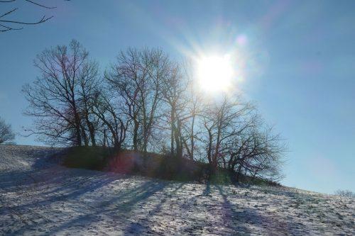 2021/01 - Sonnenschein und Winterlandschaft am letzten Tag im Januar.