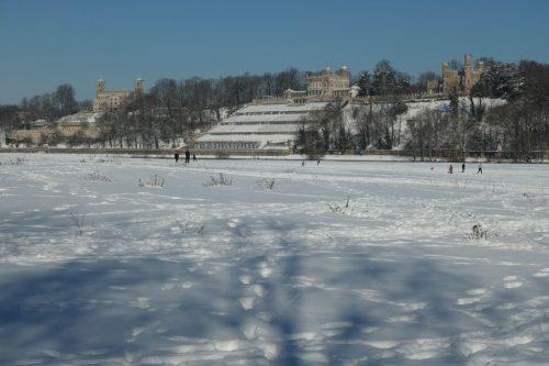 2021/02 - Schneevergnügen an den Elbwiesen in Dresden.