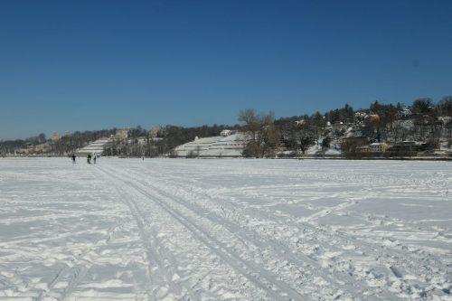 2021/02 - Die Elbwieswen im Schnee.